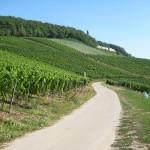 Wanderweg zum Niederwalddenkmal