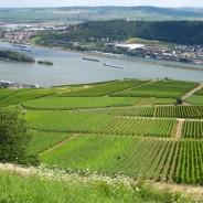 Geschichte des Rheingaus
